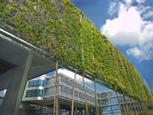 Carl Stahl zelené fasády